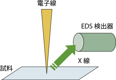 EDS原理